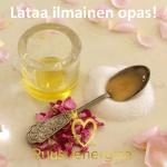 lataa-ilmainen-diy-opas-ruusuenergiaa-fi-blogi